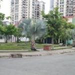 Đất nền An Phú Anh Khánh Quận 2